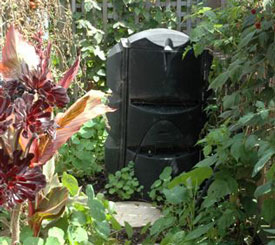 Compost bin from most garden stores