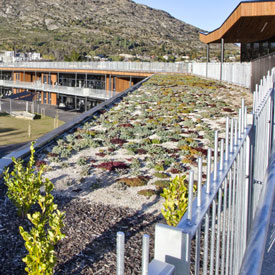 Living roofs - more than  aesthetically pleasing!